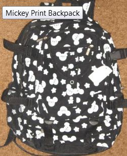 The Perfect Walt Disney World Backpack