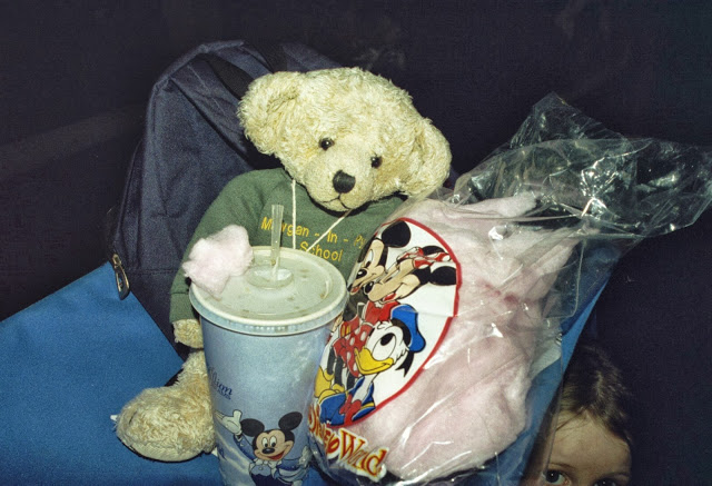 Taking a Travel Bear to Walt Disney World