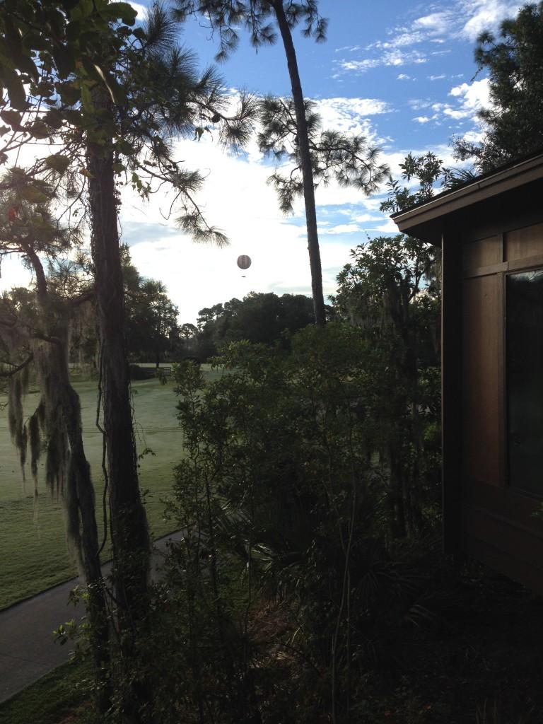 Treehouse Villas Golf Course/Flights of Wonder View