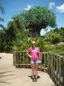Doing Disney's Animal Kingdom alone