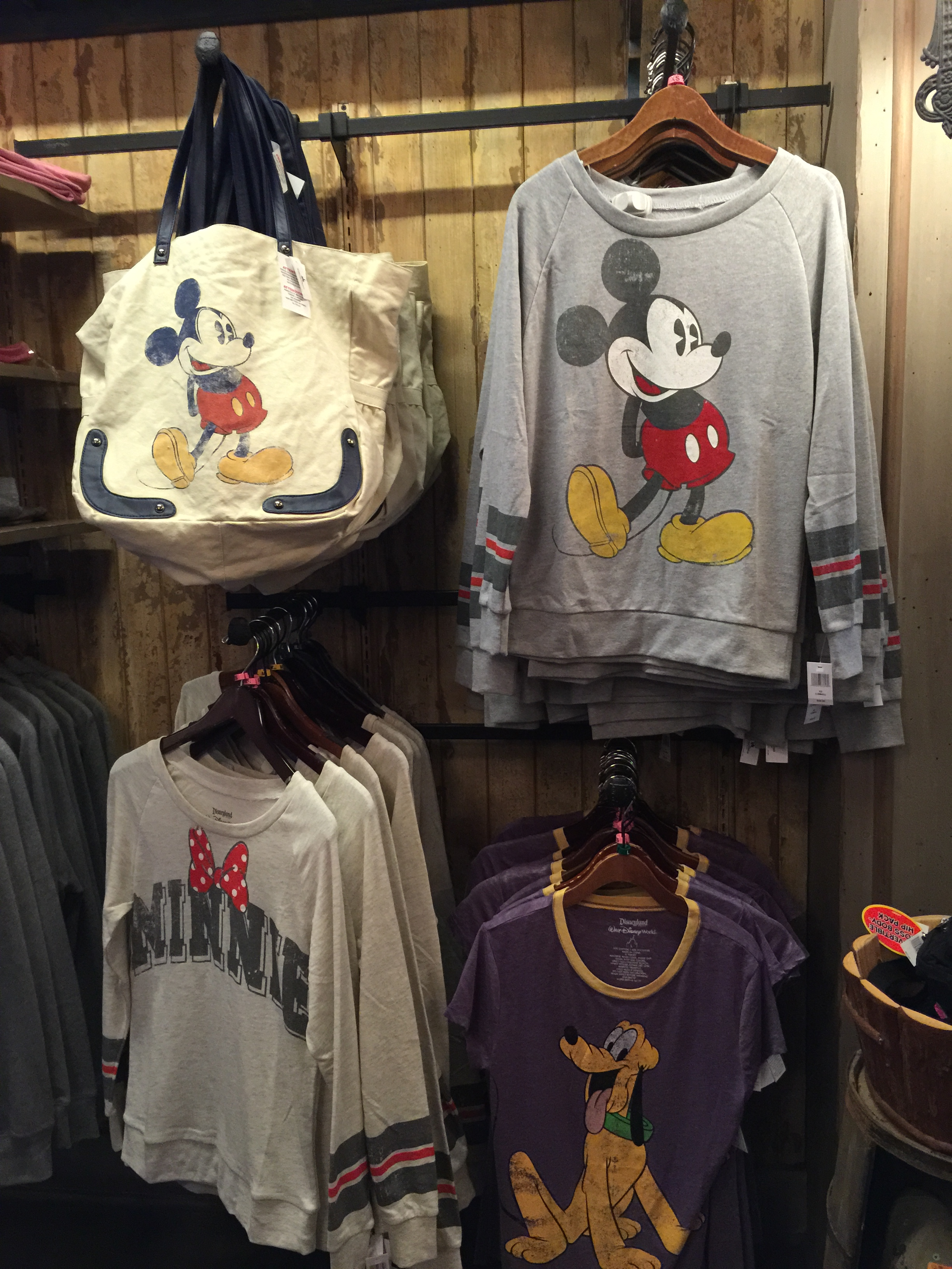 Top 5 Dos and Don't at a Disney Park