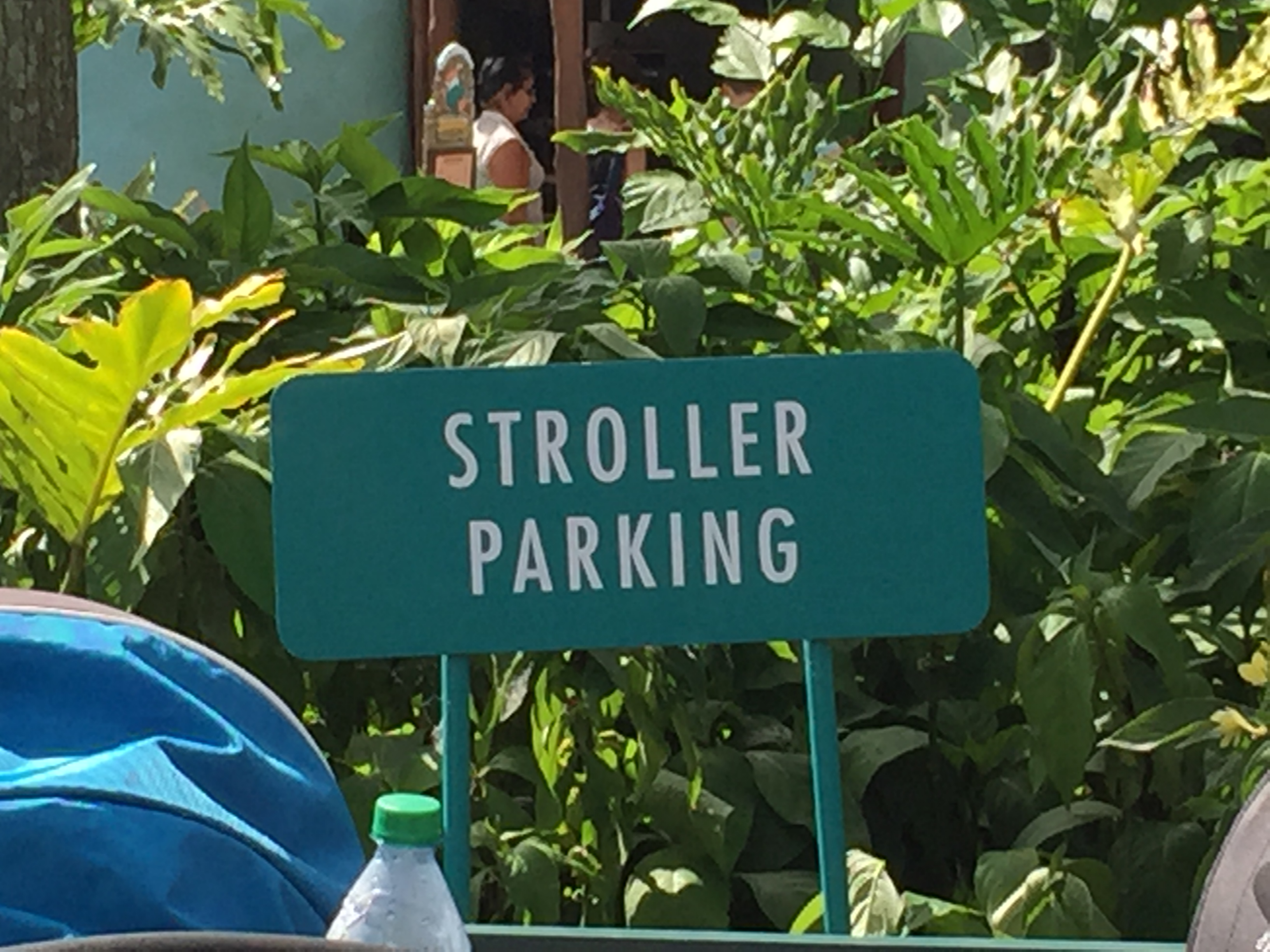 Strollers-A necessary evil