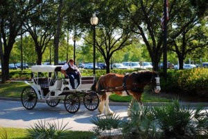 Horse drawn carriage at Port Orleans French Quarter - Photo credit to Kerry Guedry