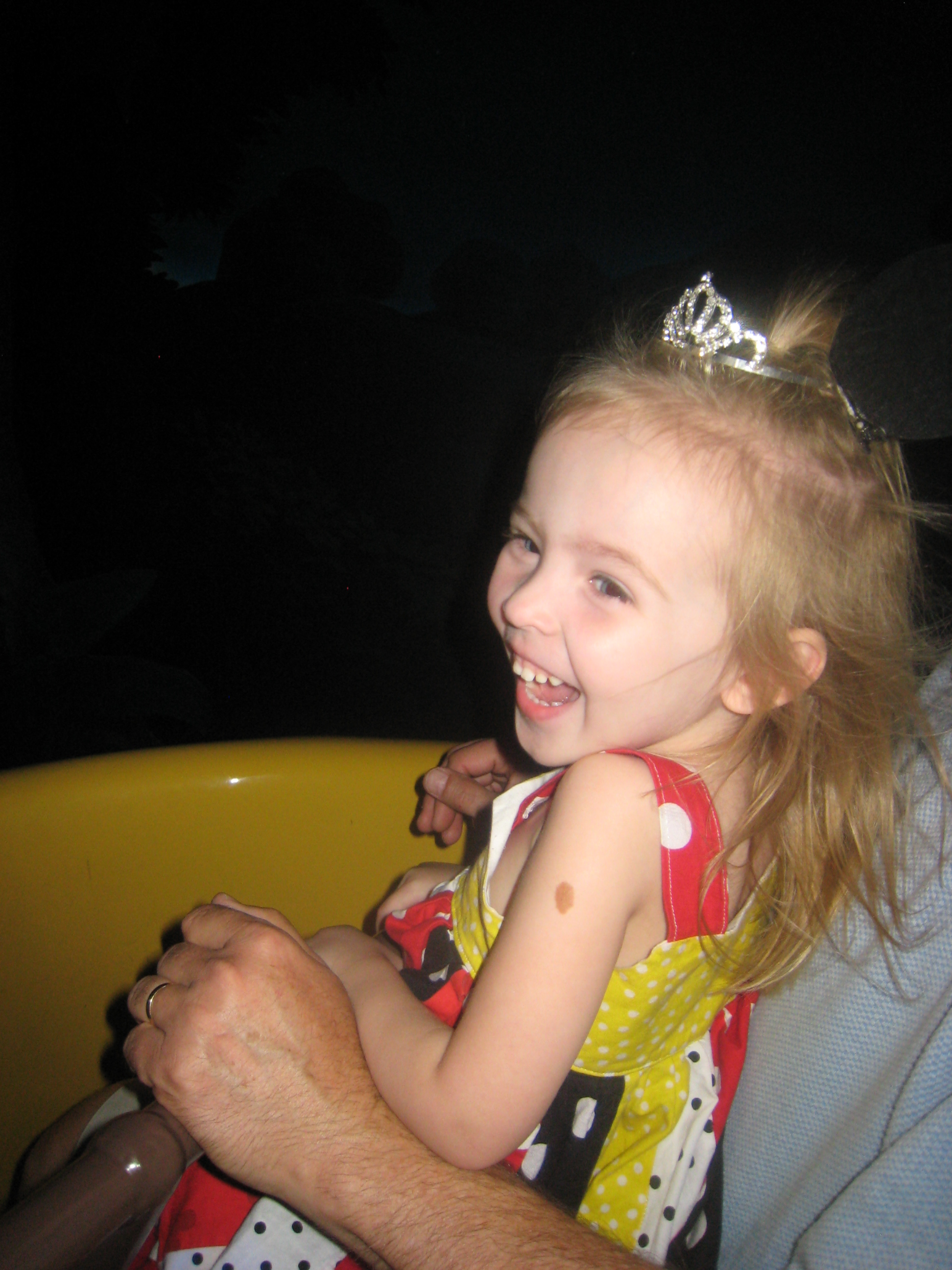 Sharing the Magic of Walt Disney World with Grandchildren