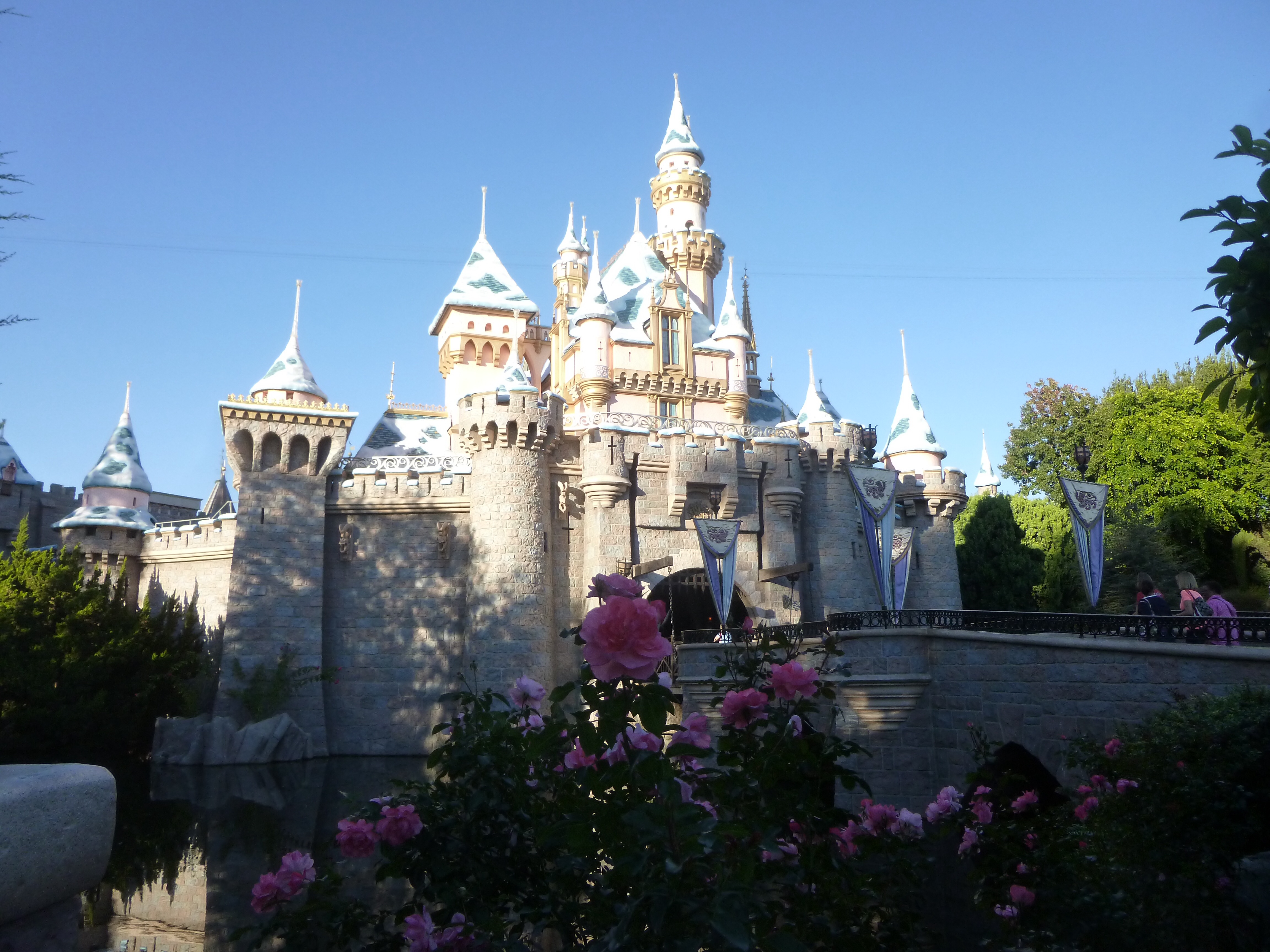 Best Case Scenario: What to Do When You Win a Disney Sweepstakes
