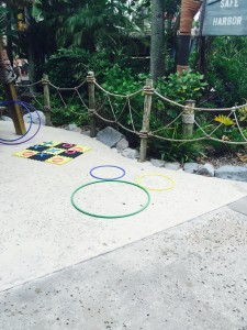 Typhoon Lagoon Hidden Mickey