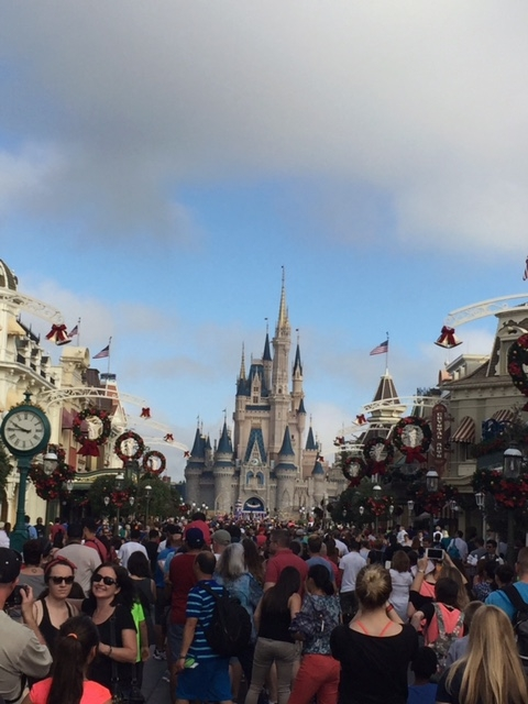 WDW – When Crowded is the Only Option