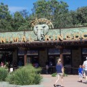 Animal Kingdom: It's Not just a half day park!
