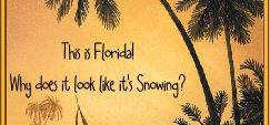 Traveling to Disney World During the Off Season?  Prepare for All Kinds of Weather.