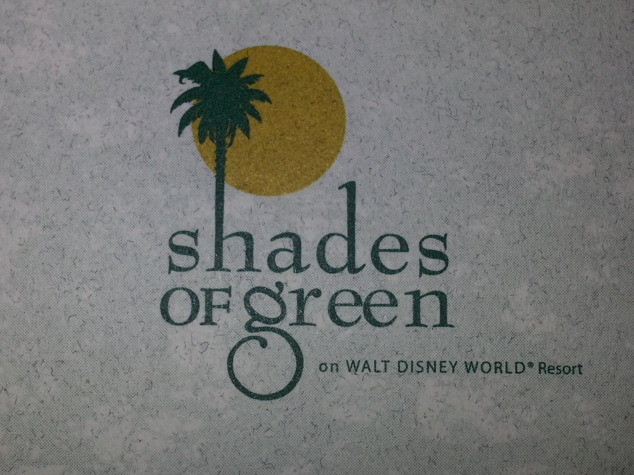 Understanding Bus Transportation Between Shades of Green Resort and Disney World Parks