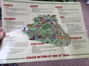 maharajah jungle trek 5