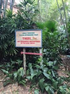 maharajah jungle trek 6