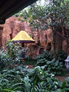 maharajah jungle trek 8