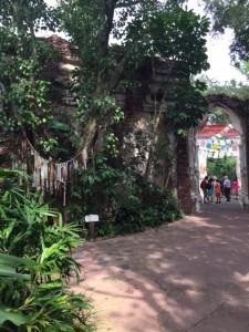 maharajah jungle trek 9