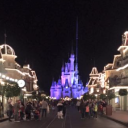 Doing Disney World During the First Trimester