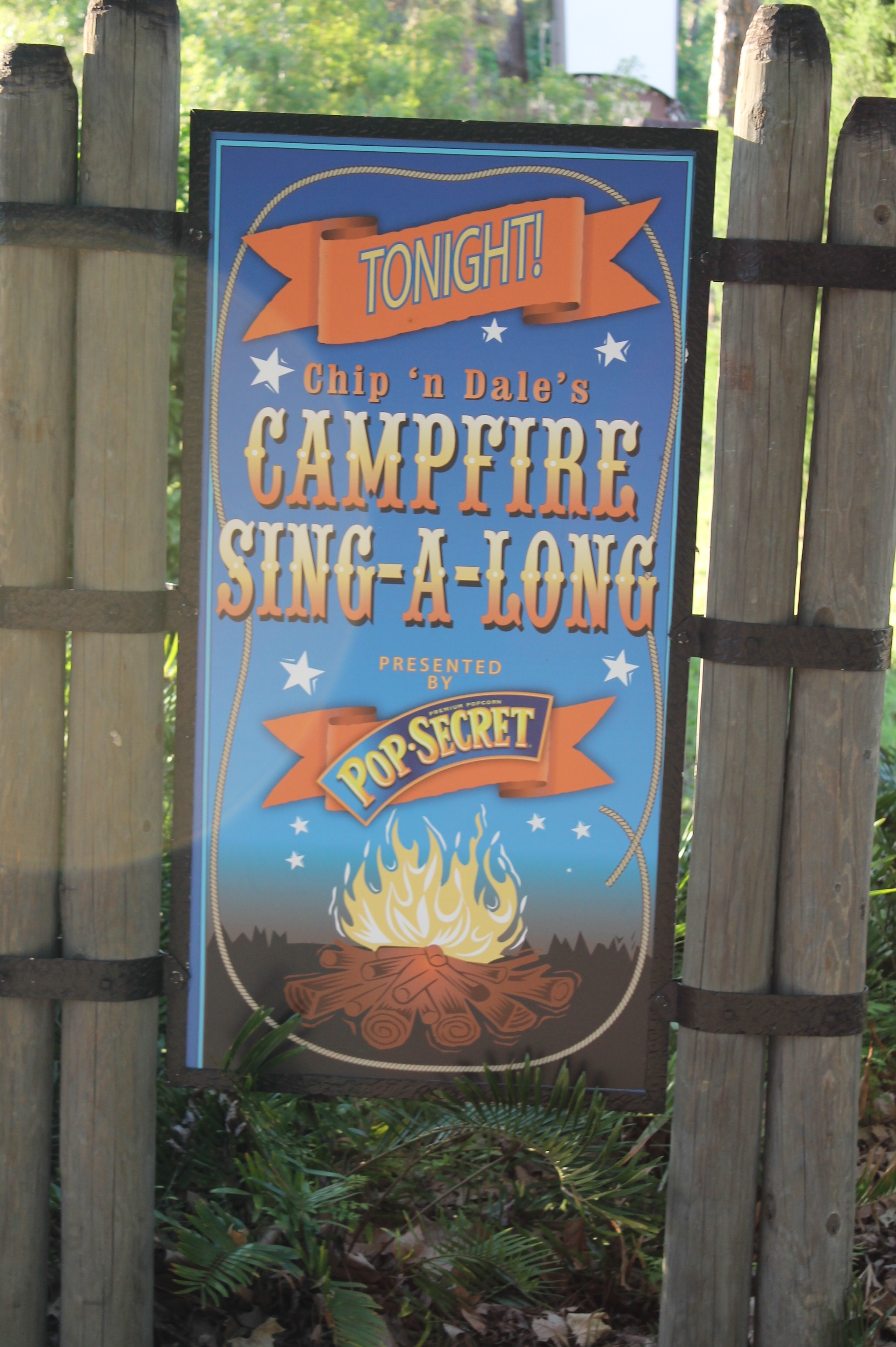 S'mores and Songs at Disney's Fort Wilderness