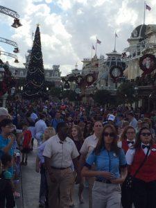 WDW Christmas Magic Kingdom