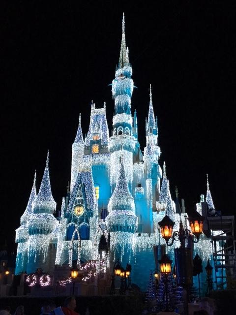 Walt Disney World Holiday Happenings 2020