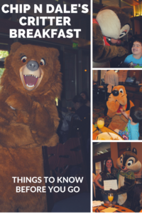 Know Before You Go- TIps for Dining at Chip N Dale's Critter Breakfast at the Storyteller's Cafe at the Grand Californian.