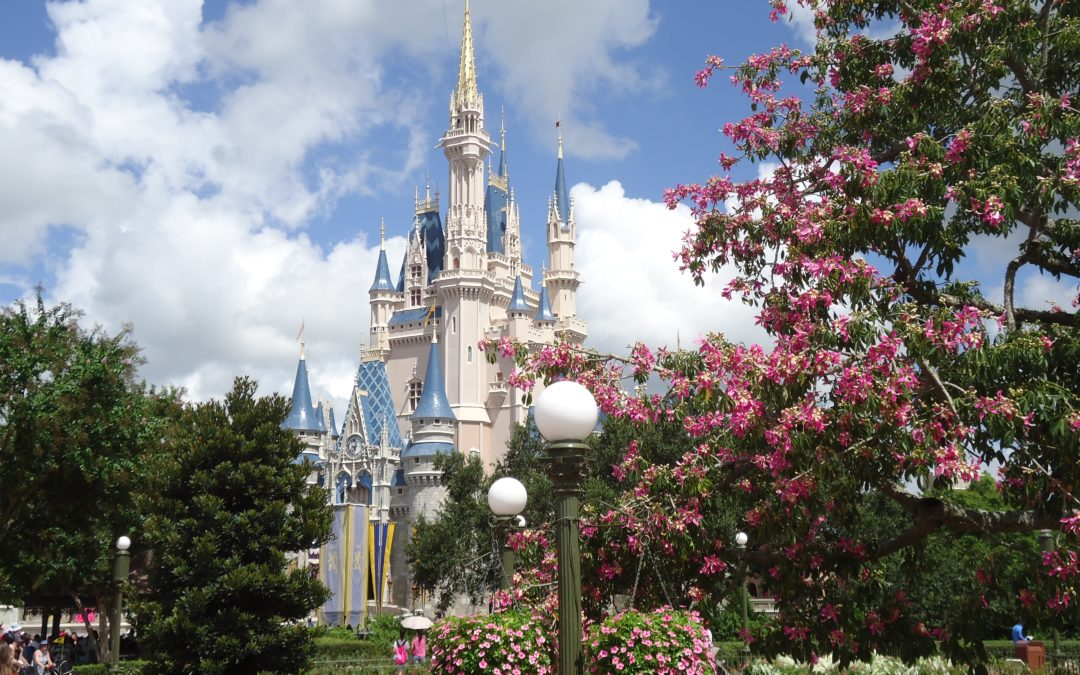 7 Tips for Dining on a Budget at Walt Disney World (Quick Service Edition)