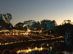 Everything You Need to Know about Animal Kingdom's River of Lights, Animal Kingdom's Nighttime Show!