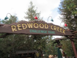 Why Your Preschooler Will Run to Redwood Creek Challenge Trail at Disney's California Adventure