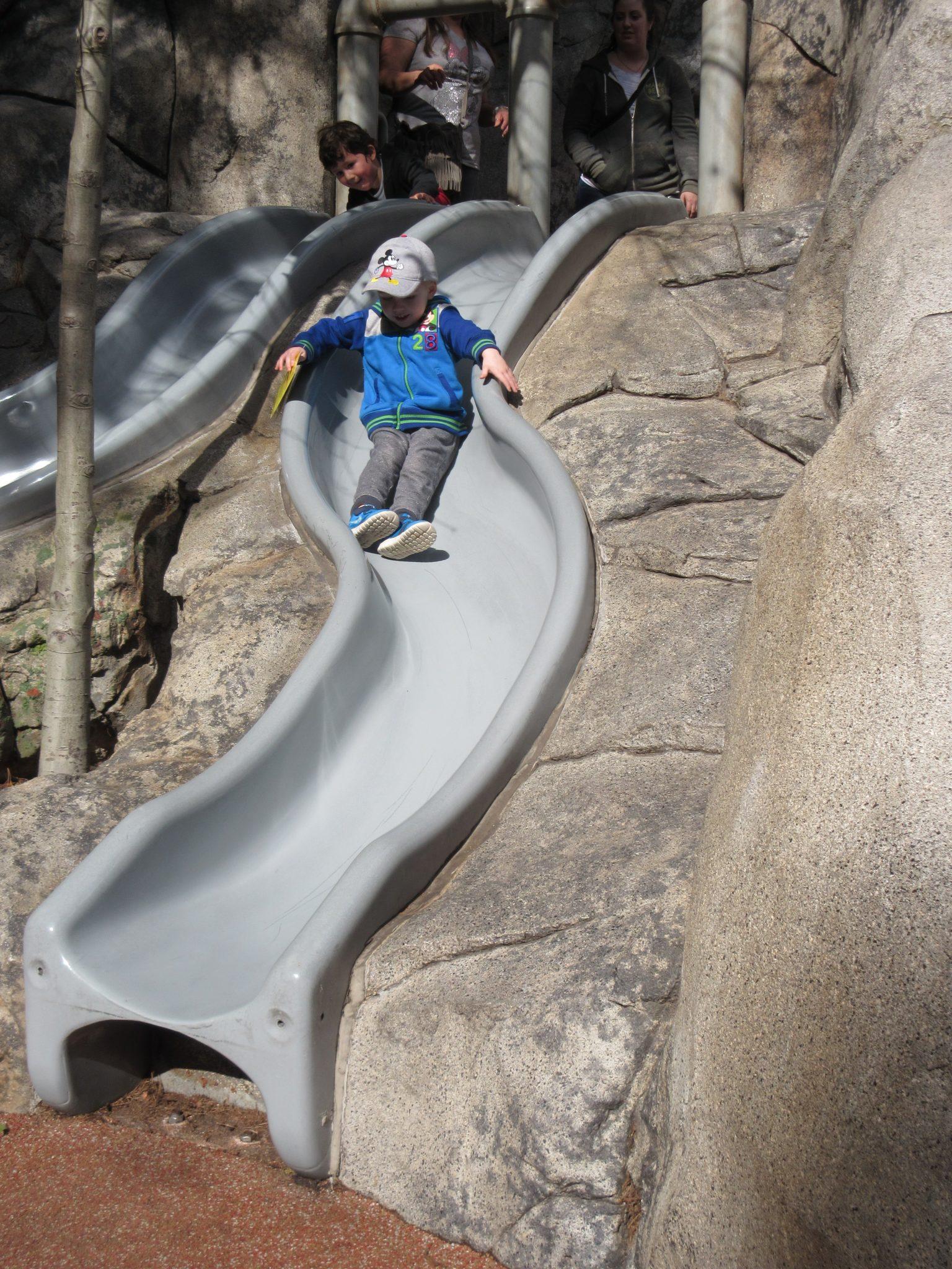 Why Your Preschooler Will Run to Redwood Creek Challenge