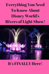 Tips for Disney World'sRiver of Lights! (1)