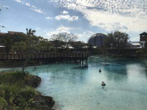 14 Day Disney World Itinerary