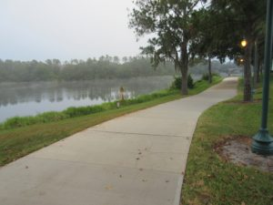 Walk this Way- A Shortcut from Hollywood Studios to Epcot