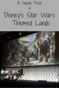 A Sneak Peek at Some Secrets of Disney's Star Wars-Themed Lands
