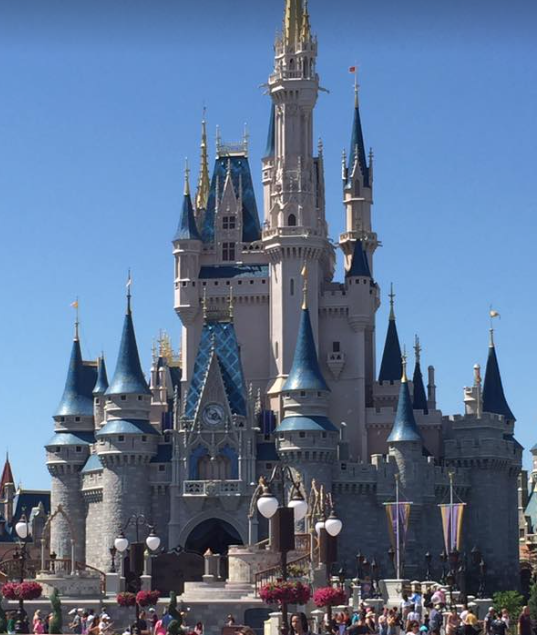 Tips for a Toddler's First Trip to Walt Disney World