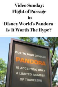 Is Flight of Passage in Disney World's Pandora Worth the Hype?