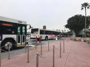 Transportation system, bus, getting around Disney