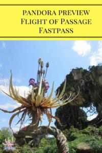 Flight of Passage Fastpass Tips, Pandora, Animal Kingdom, Disney World Attractions