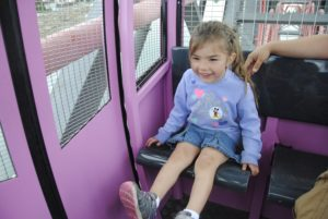 Tips for Taking Young Children to Disneyland's California Adventure