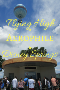 Flying High at Aerophile in Disney Springs