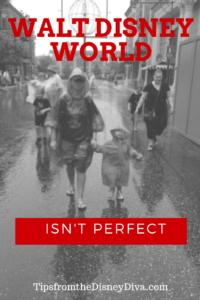 WDW Isn't Perfect