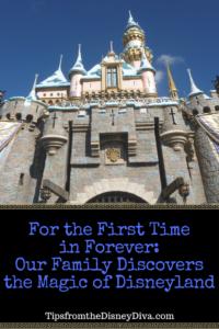 Discovering Disneyland