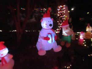 Holiday Sleigh Rides at Walt Disney World Resort