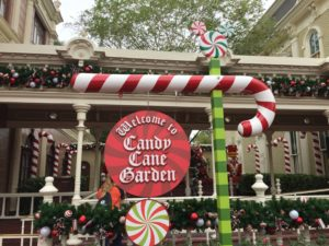 Santa at Magic Kingdom