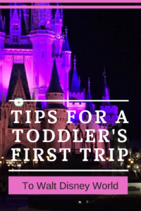 Tips for a Toddler's First Trip to Disney World