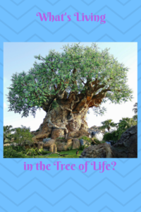 Walt Disney World's Tree of LIfe in Animal Kingdom