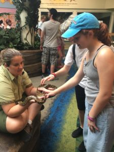Conservation Station wild life, animal encounters, Rafiki's planet watch, Animal Kingdom