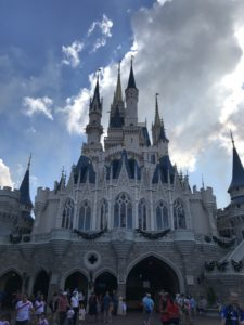Multiple Disney World Trips