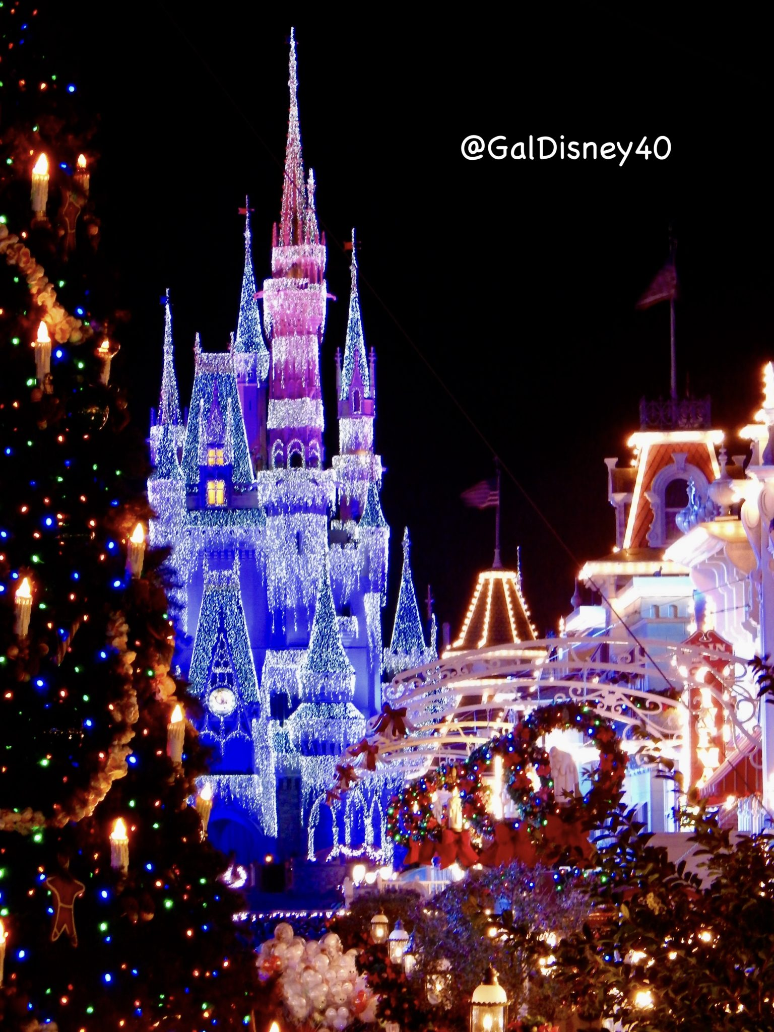 Disney Vacation Club  Why I love it  Tips from the