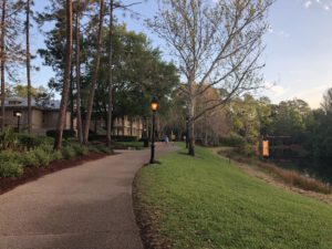 The course near the Alligator Bayou rooms