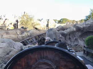 Seven Dwarf's Mine Train at Early Morning Magic