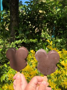 Mickey Bars at Animal Kingdom