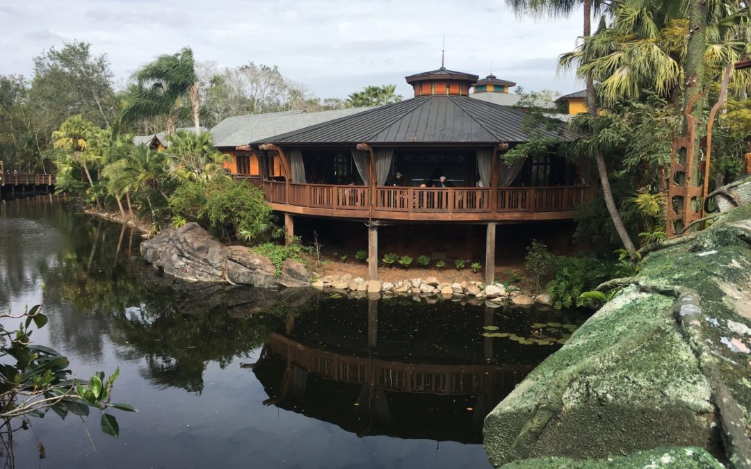 Nomad Lounge Review: A Hidden Oasis on Pandora's Doorstep